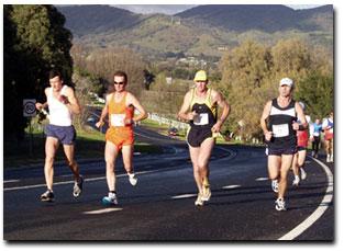 mudgee marathon